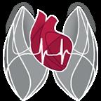 Herz-Kreislauf-Erkrankungen - Köln-Bayenthal - Diekmann - Logo